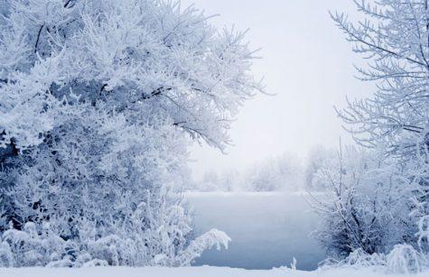 Winter break should be longer
