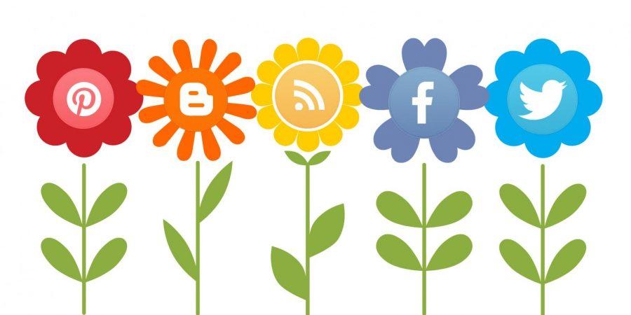 Environmentalism on Social Media